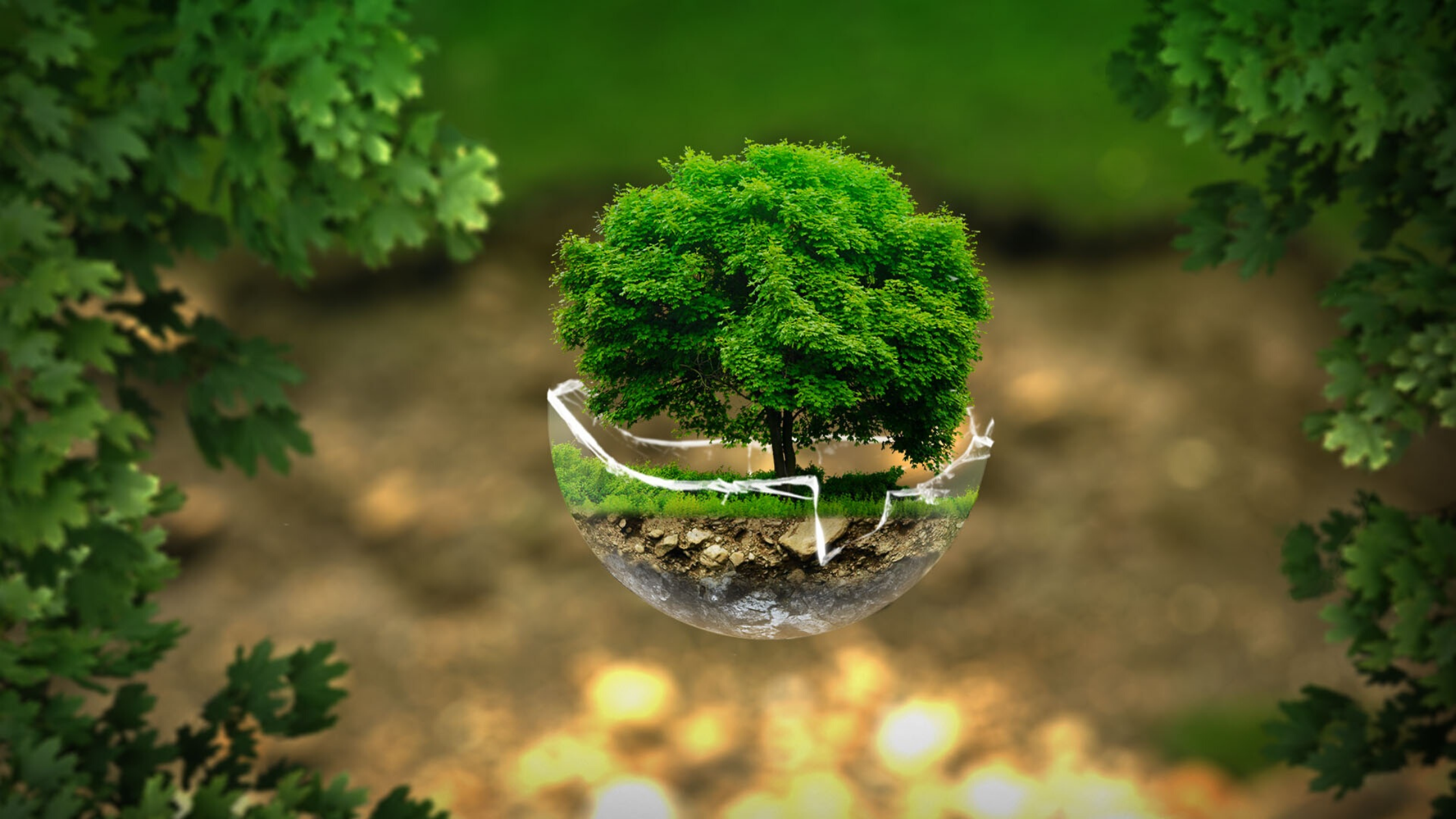 visual greenhouse gas emissions
